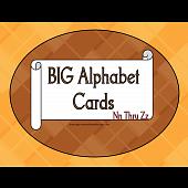 BIG Alphabet Cards Nn Thur Zz