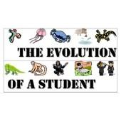Classroom Management Strategies - class behavior evolution scale poster