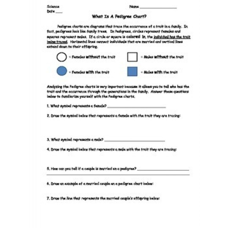 Chart Lesson Bundle Worksheet Exit Slip and Homework included – Pedigree Worksheet