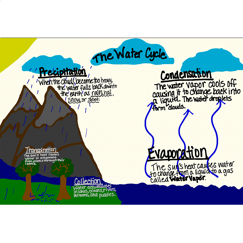 Printable Worksheets worksheets on the water cycle : 2nd grade science worksheets water cycle 4343123 - virtualdir.info